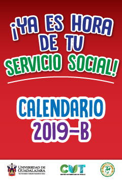 Servicio social 2019B