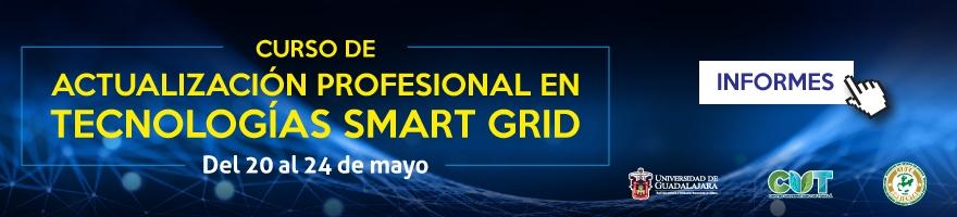 CURSO DE ACTUALIZACIÓN PROFESIONAL EN TECNOLOGÍAS SMART GRID