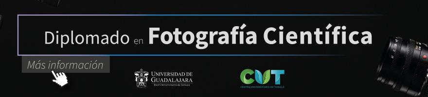 Diplomado en Fotografía Científica