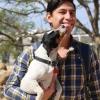 Rescate Perruno CUT, es un grupo conformado por estudiantes que auxilian a los animales, para que sean adoptados.